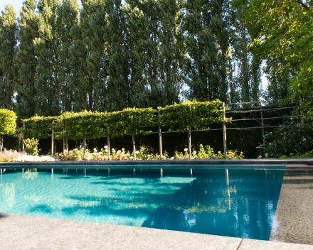 Chloorvij zwembad